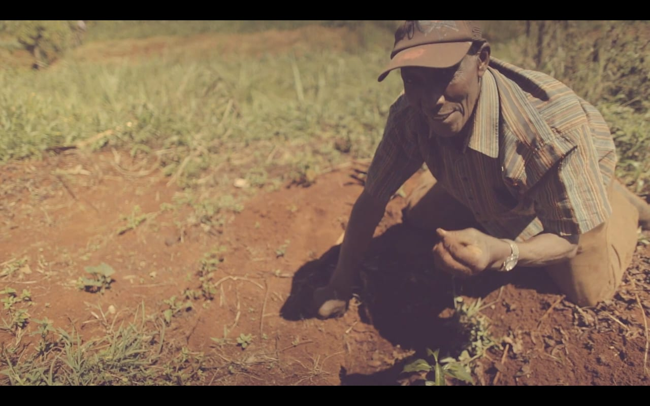 Verve Kenya Coffee Video